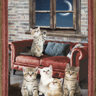 plaid cuccioli gattini