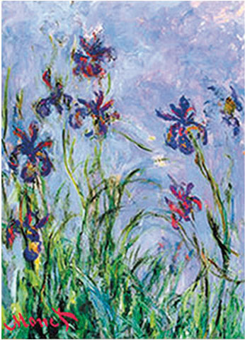 strofinaccio iris monet