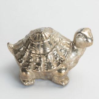 fermacarte tartaruga